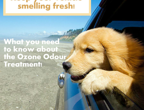 What You Need To Know About The Ozone Odour Treatment